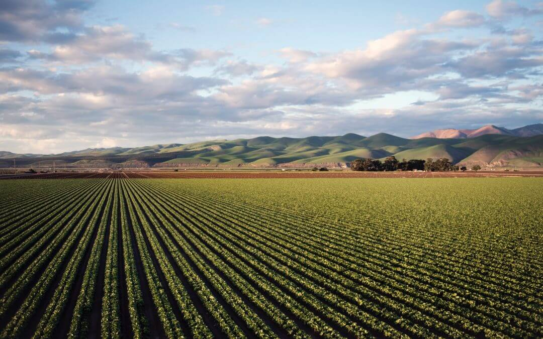 Farm land landscape