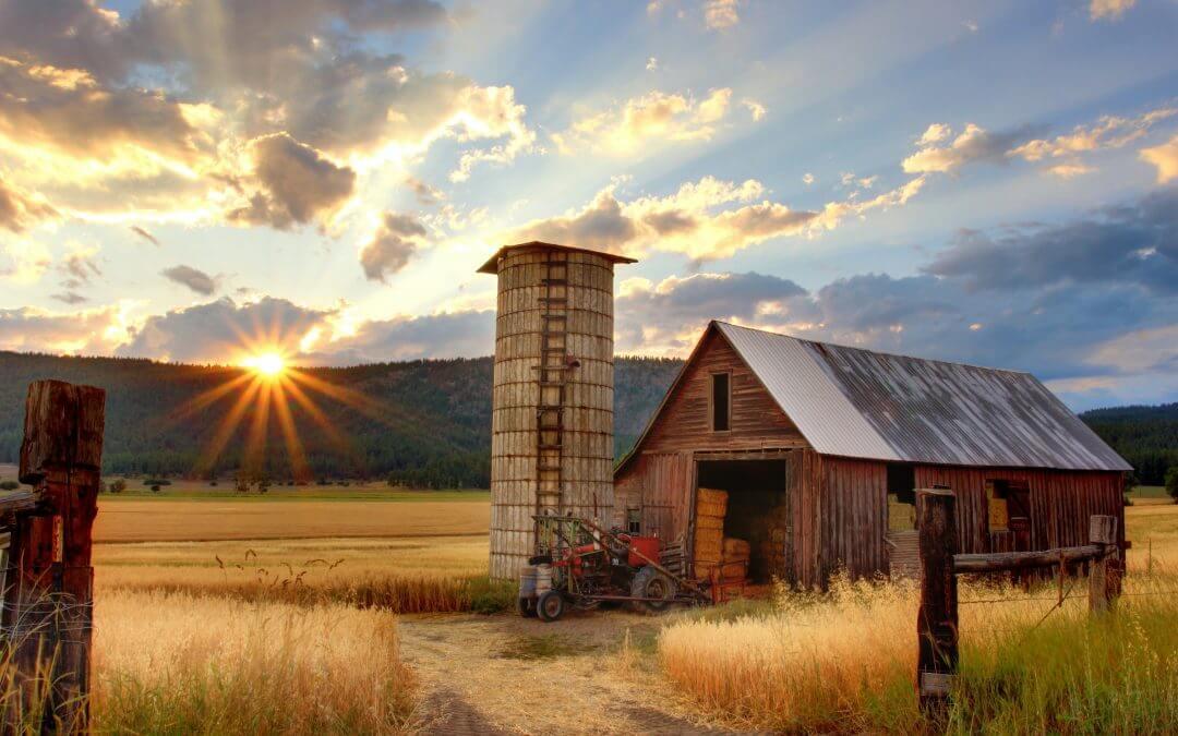 Sun setting over farm