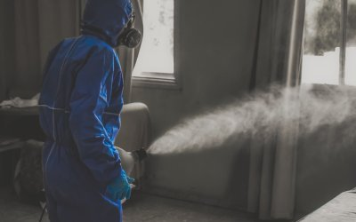 How Effective is Fogging as a Means of Disinfection?